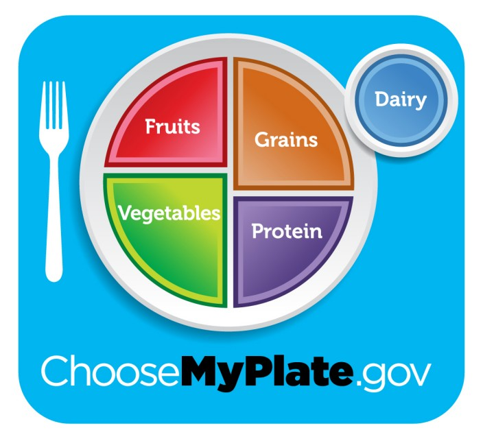 Use the MyPlate model when planning your meals. Make half your plate fruits and vegetables. Choose lean proteins. Make half your grains whole-grains. Choose low-fat dairy.  Does your plate look like MyPlate?